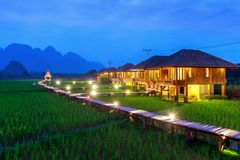 Wooden path and green rice field at night in Vang Vieng, Laos.  Stock Image