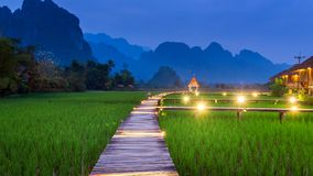 Wooden path and green rice field at night in Vang Vieng, Laos.  Royalty Free Stock Photography