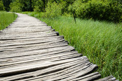 Wooden Path on a Hiking Trail Royalty Free Stock Photos