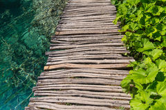 Wooden path and lake Stock Image