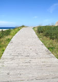 Wooden path leading to the beach Stock Photography