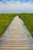 Wooden path leading to sea. Wooden pathway receding over green grass to sea in background Stock Photography