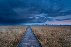 Wooden path on marsh at storm during sunset Stock Images