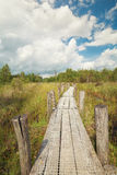 Wooden path on marsh Stock Images