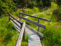 Wooden path in moor area Royalty Free Stock Image
