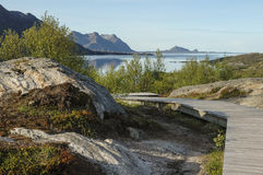 Wooden path on mountain at seaside Stock Photography