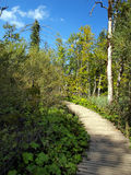Wooden path in National Park in Plitvice Stock Photos