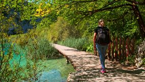 Wooden path in National Park in Plitvice stock video footage