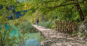 Wooden path in National Park in Plitvice Royalty Free Stock Image