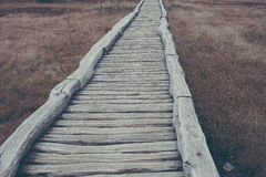 Wooden path in natural national park Royalty Free Stock Image
