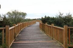Wooden path Royalty Free Stock Photo