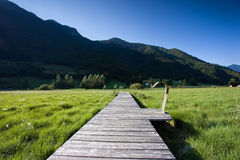 Wooden path in the nature Royalty Free Stock Image