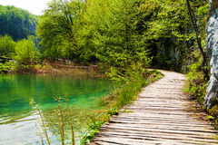 Wooden path near a forest lake in Plitvice Lakes National Park, Stock Photo