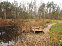 Wooden path near lake Stock Image