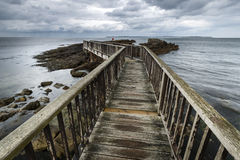 Wooden path on North Irish coastline Stock Photography