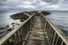 Wooden path on North Irish coastline Stock Photography