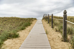 Wooden path over dunes at beach. Stock Photos
