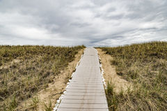 Wooden path over dunes at beach. Stock Image
