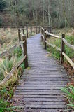 Wooden path over marshland in England. Stock Photos