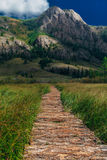Wooden path through the peat bog. Altai Royalty Free Stock Photography