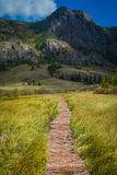 Wooden path through the peat bog. Altai Royalty Free Stock Photos