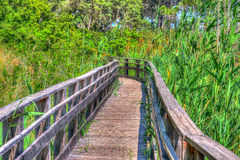 Wooden path in Sardinia in hdr Stock Image