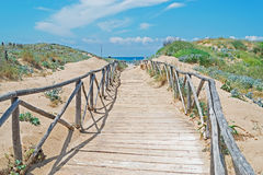 Wooden path by the shore Royalty Free Stock Photos