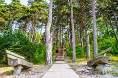 Wooden path and stairs. Near Baltic see, Olando kepure place Royalty Free Stock Image