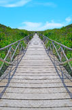 Wooden path to the beach Stock Images