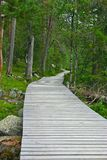 Wooden Path to the end Royalty Free Stock Photography