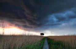 Wooden path to observation tower during storm and shower Stock Image