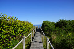 Wooden path to the ocean Stock Photos