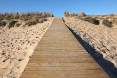 Wooden path to a sand dune Royalty Free Stock Photos