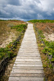 Wooden path Stock Image
