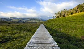 Wooden path for trekking and hiking in Tasmania stock photo