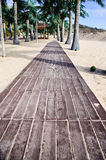 Wooden path. Tropical beach   with palm threes and wooden path Stock Image