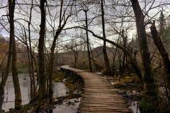 Wooden path trough the lakes Stock Photos