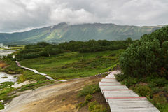 Wooden path in the Uzon Caldera. Kronotsky Nature Reserve Royalty Free Stock Image