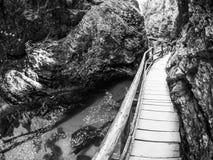 Wooden path in Vintgar gorge Stock Photo