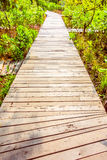 Wooden path for walking. Old wooden path for walking in the garden - Vintage Filter Stock Image