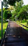 Wooden path walkway Royalty Free Stock Image