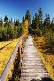 Wooden path walkway, Czech Republic stock image