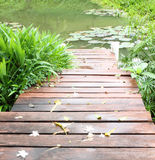 Wooden path way Royalty Free Stock Photography