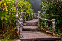 Wooden path way Stock Images