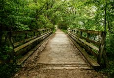 Wooden Path into the woods stock images