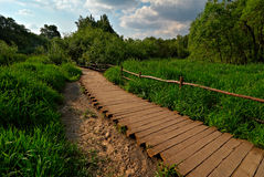 Wooden pathway. That is a wooden pathway in the park Stock Photos