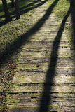 Wooden pathway. In the forest Stock Photography