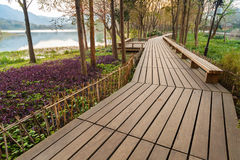 Wooden pathway on the coast, Hangzhou city center, China Royalty Free Stock Images