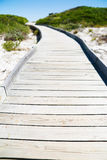 Wooden pathway through dune Stock Image