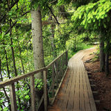 Wooden pathway in forests of Valaam island, Russia Stock Image